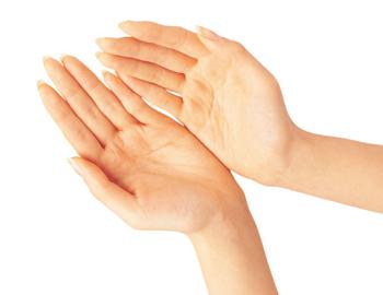 手掌与健康图解肾脏的位置图片胎儿肾脏发育肾脏纤维化检
